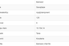 BALIKESİR SAVAŞTEPE AŞAĞI DANİŞMENTTE 10.154 M2 TARLA