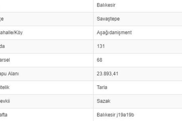 BALIKESİR SAVAŞTEPE AŞAĞI DANİŞMENTTE 23.893 M2 TARLA