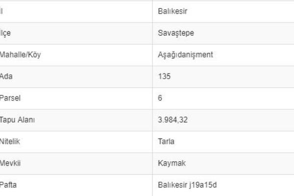BALIKESİR SAVAŞTEPE AŞAĞI DANİŞMENTTE 3.984 M2 TARLA